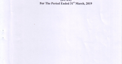 Independent Auditors' Report On Financial Statements For The Period  Ended  31st March,  2019
